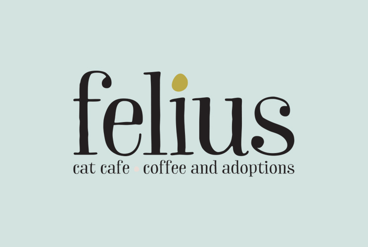 Felius Promotional Video