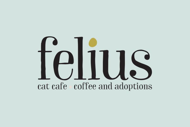 Felius Promotional Video